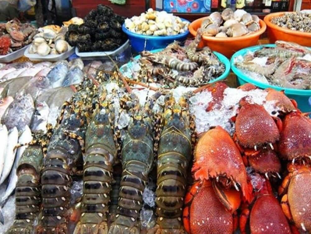 Các loại hải sản Côn Đảo