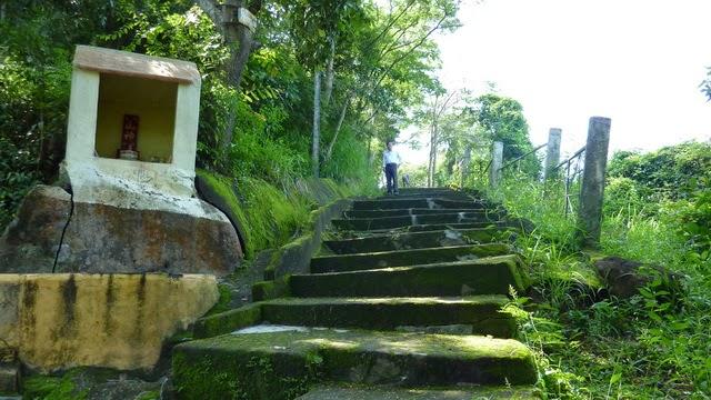 Dạo bước ven đường lên chùa Long Sơn để thưởng ngoạn cảnh đẹp tuyệt mĩ