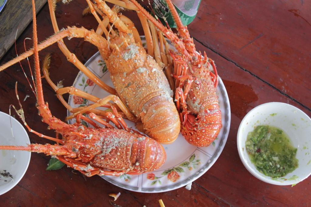 Tôm hùm đặc sản nổi tiếng nhất tại vùng đảo Bình Ba