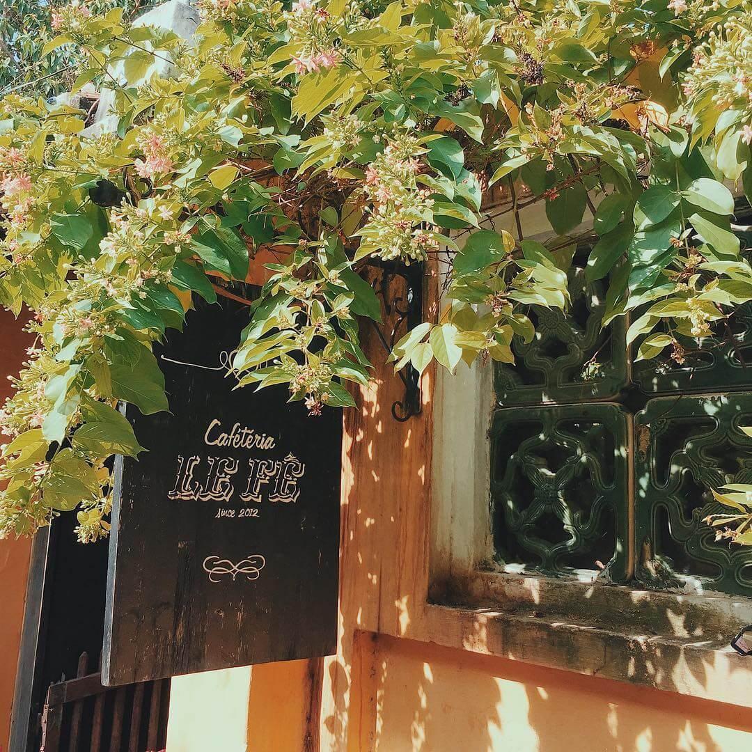 Đến với Le Fê mọi người sẽ được vừa uống cà phê vừa thưởng thức những bản nhạc Trịnh bất hủ.